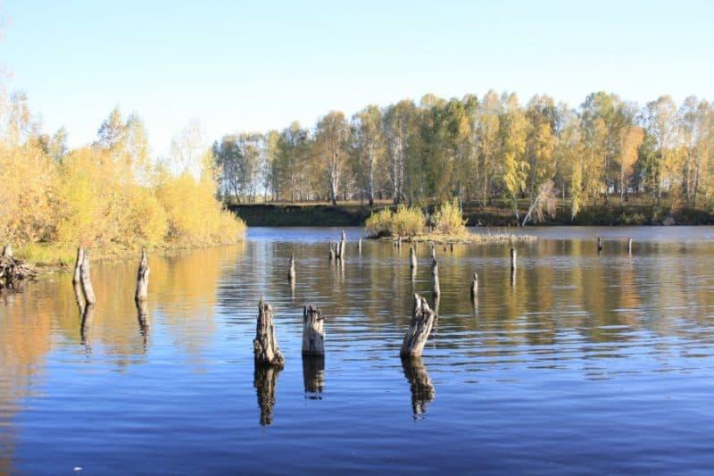 живописное озеро, Искитимский район