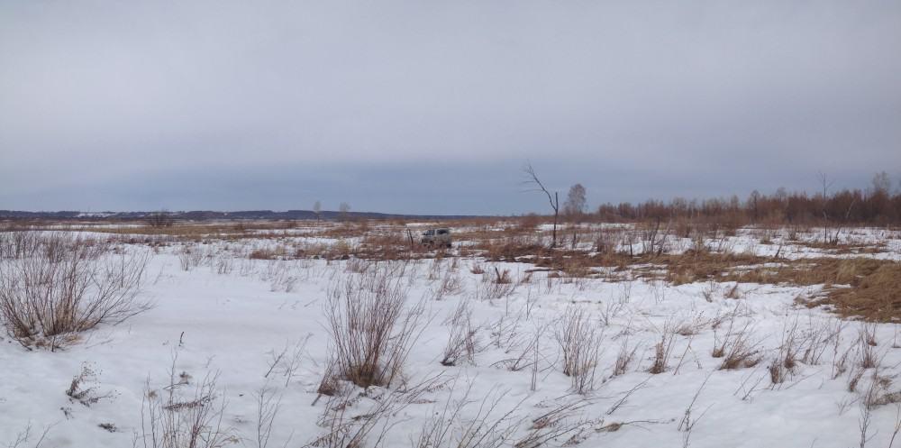 весна под новосибирском