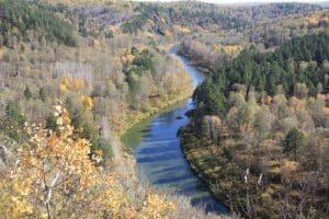Скала Зверобой золотой осенью