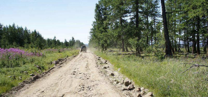 дорога вдоль озера Хубсугул, Hovsgol road