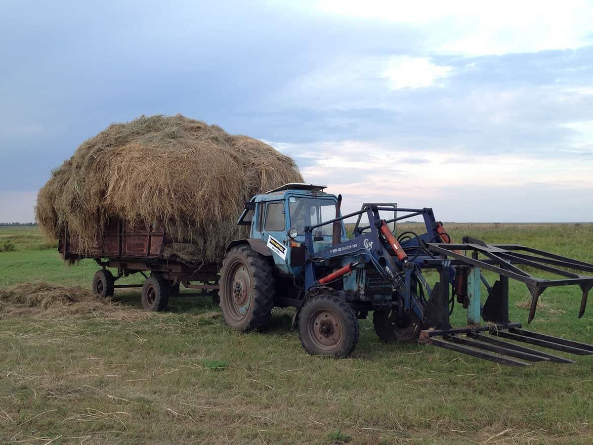 арба с сеном и трактор-стогомет с вилами