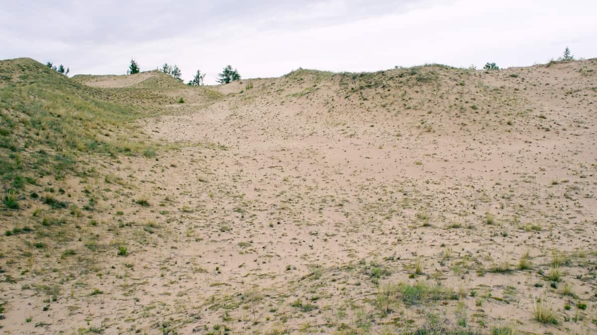 барханы песков Алтан Элс