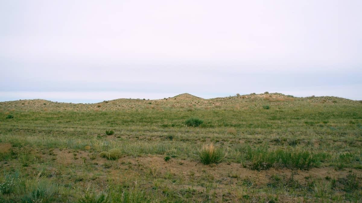 пески Алтан Элс в Монголии