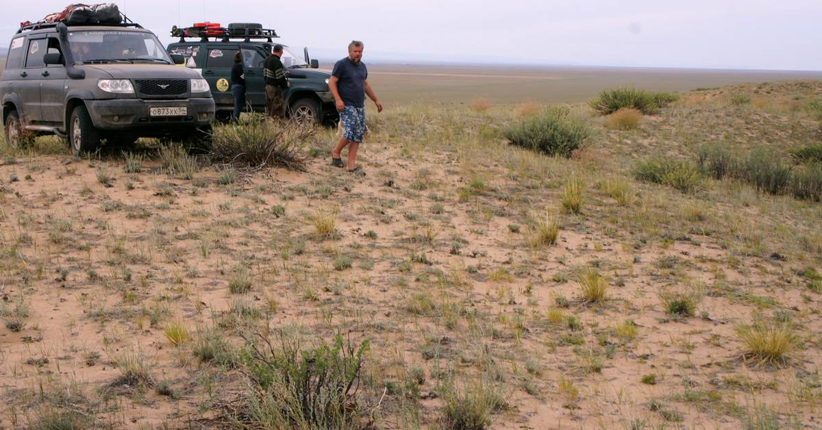 пески Алтан Элс - самая северная пустыня