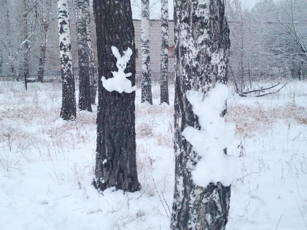 зайцы на деревьях