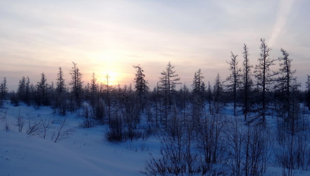 За Полярный 2017. # 1. Где начинается настоящий север?