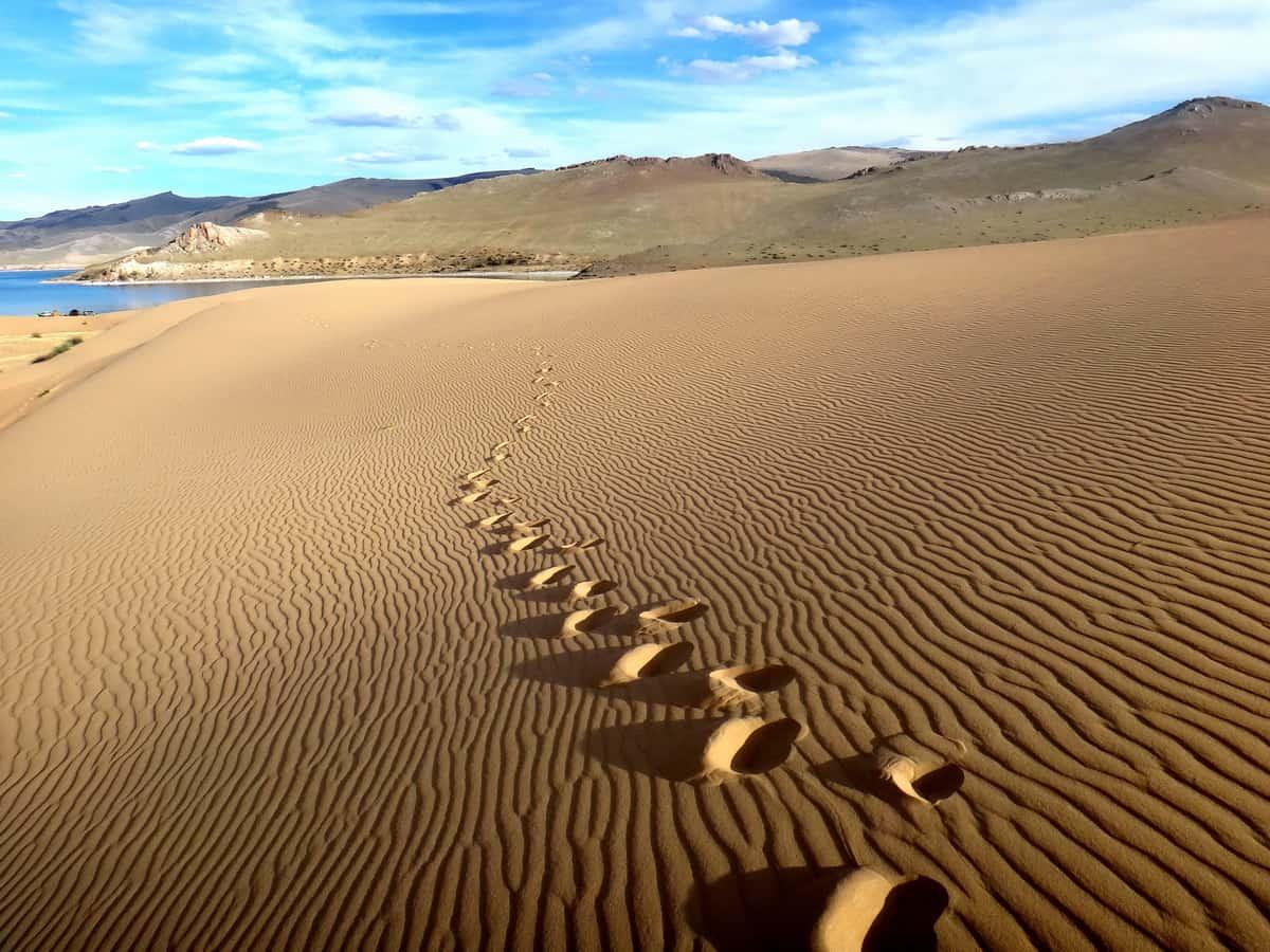 Монголия '17. # 7. Всемирная песочница