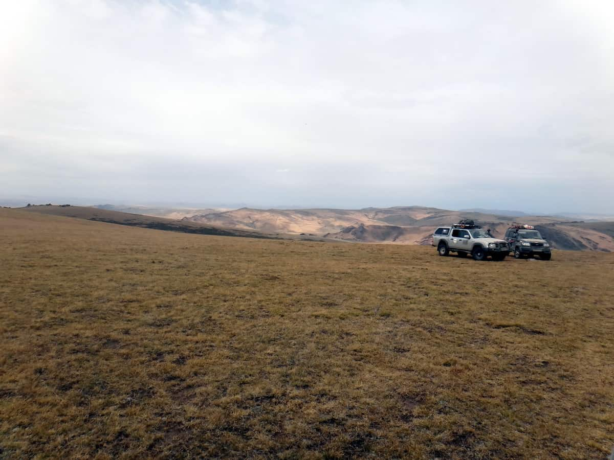 Ford Ranger в Монголии