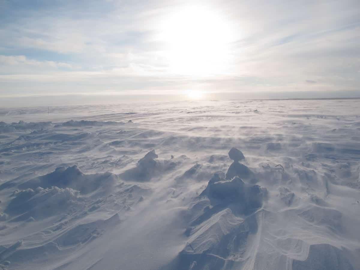 Тундра на зимнике до Антипаюты