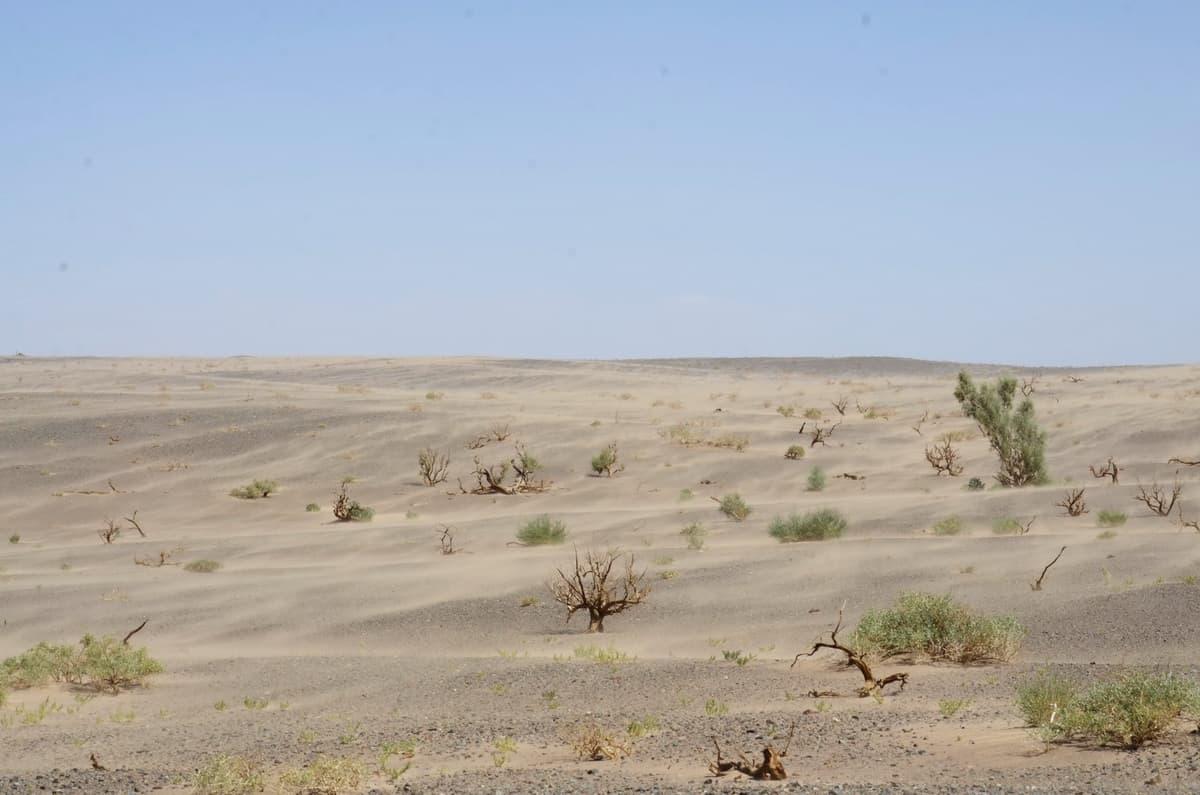 песчаная бури в пустыне Гоби