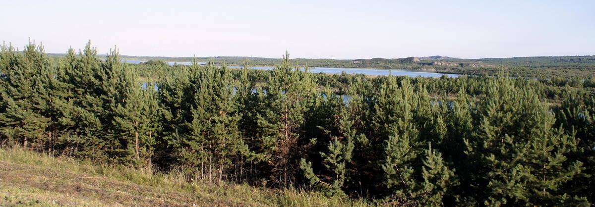 зеленое море тайги новосибирск - байкал