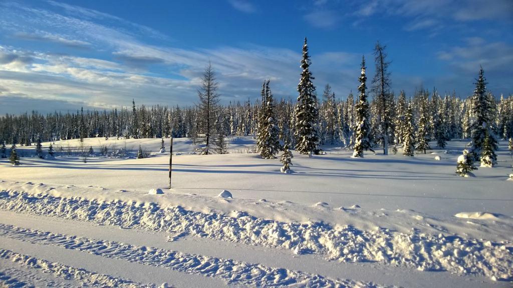 путешествие за полярный круг на внедорожнике