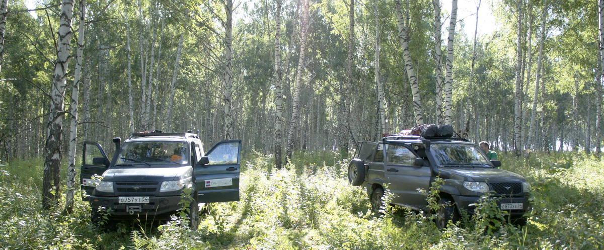 ночевка по маршруту новосибирск - байкал в лесу