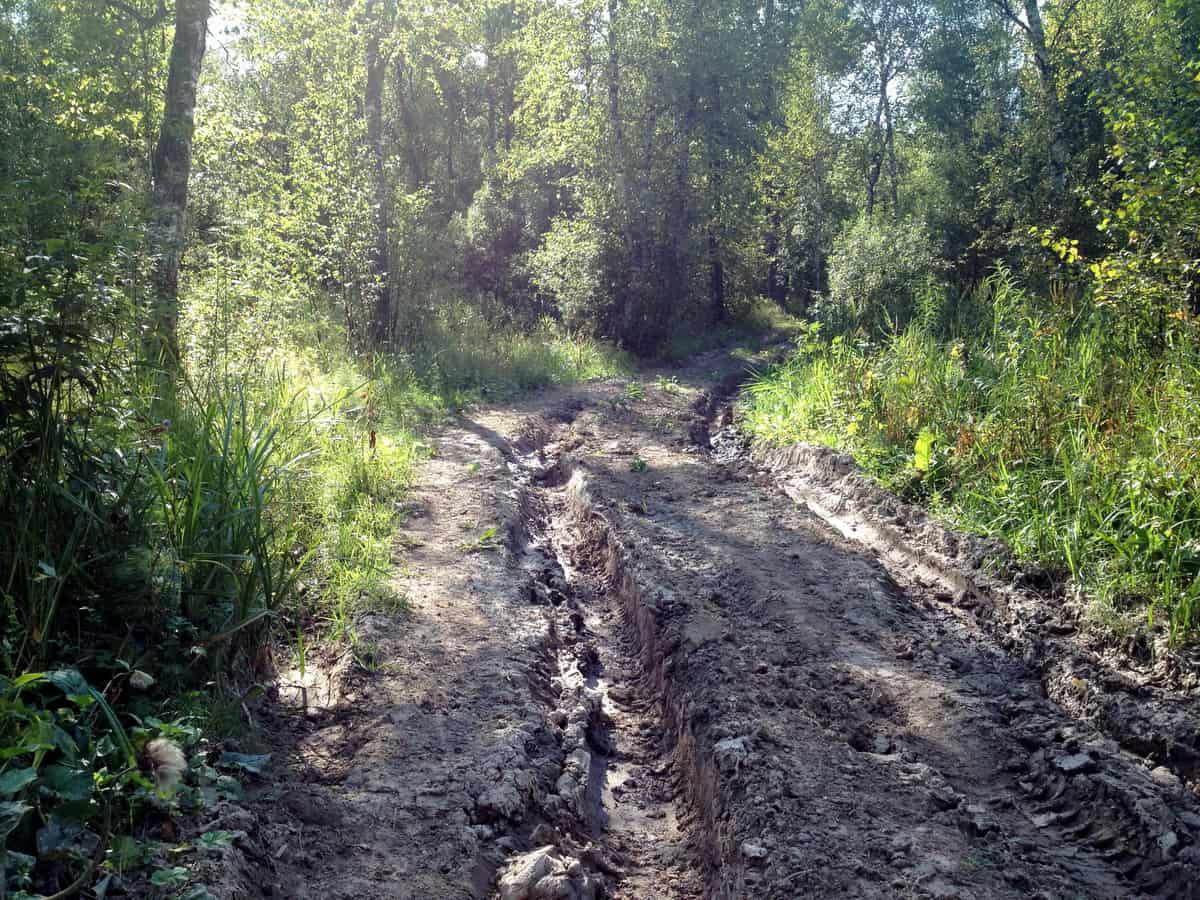 дорога из Аисово в Сур-Аисово