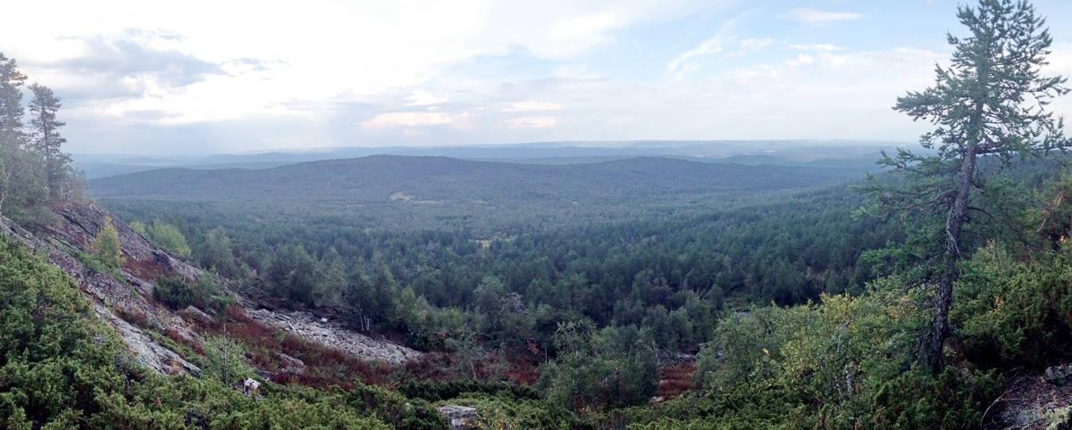 вид с вершины Катушка