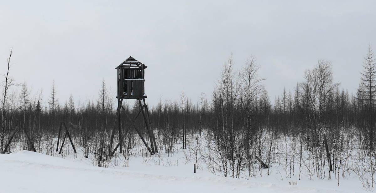 остатки 501-503 Сталинской стройки