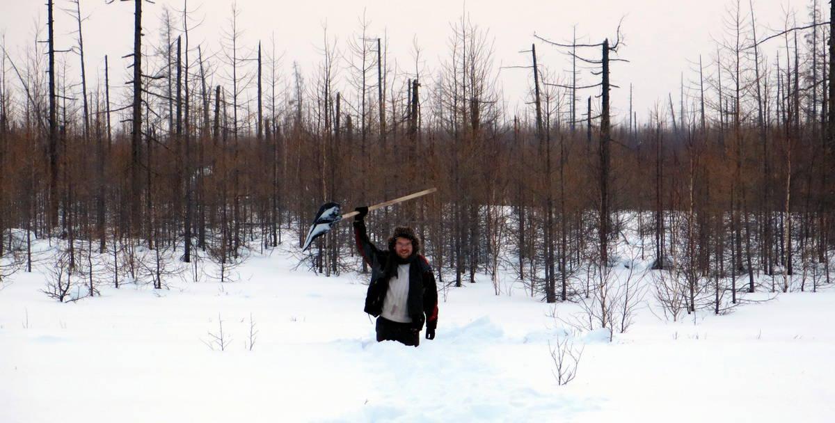 проверяем, сколько снега в тундре