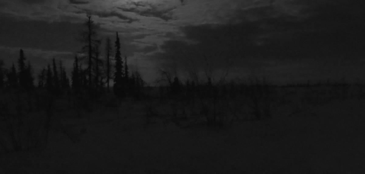 ночь в тундре