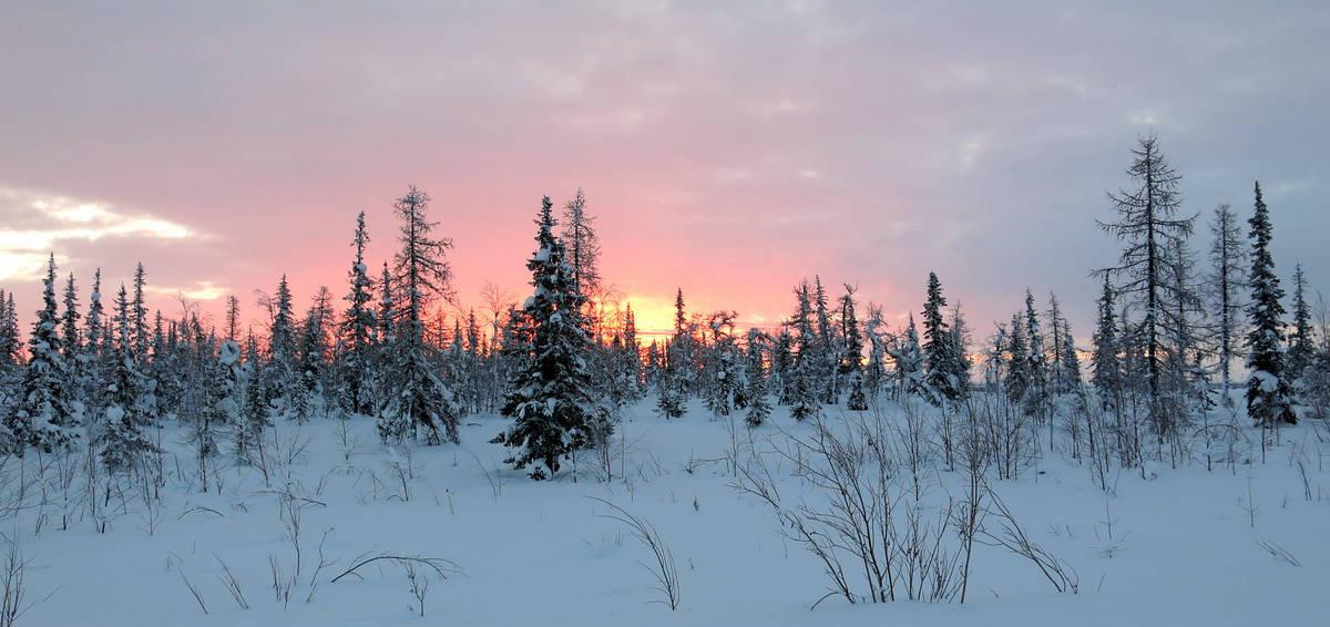 красивейший рассвет на севере