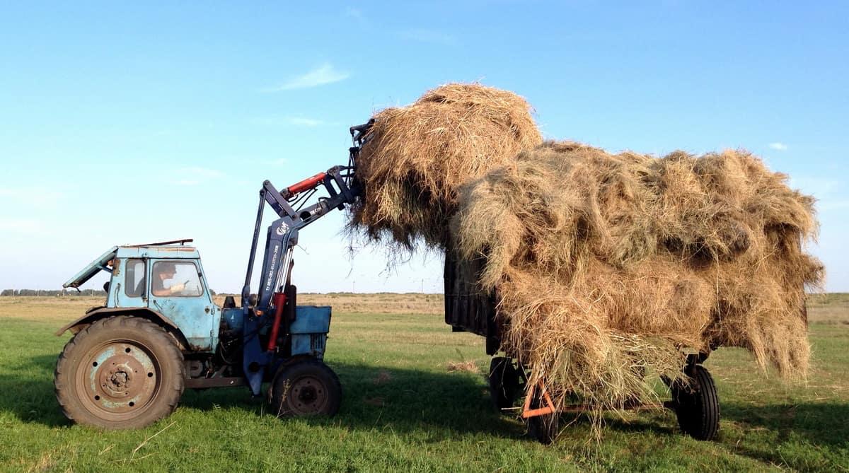 вилы для погрузки сена на беларус