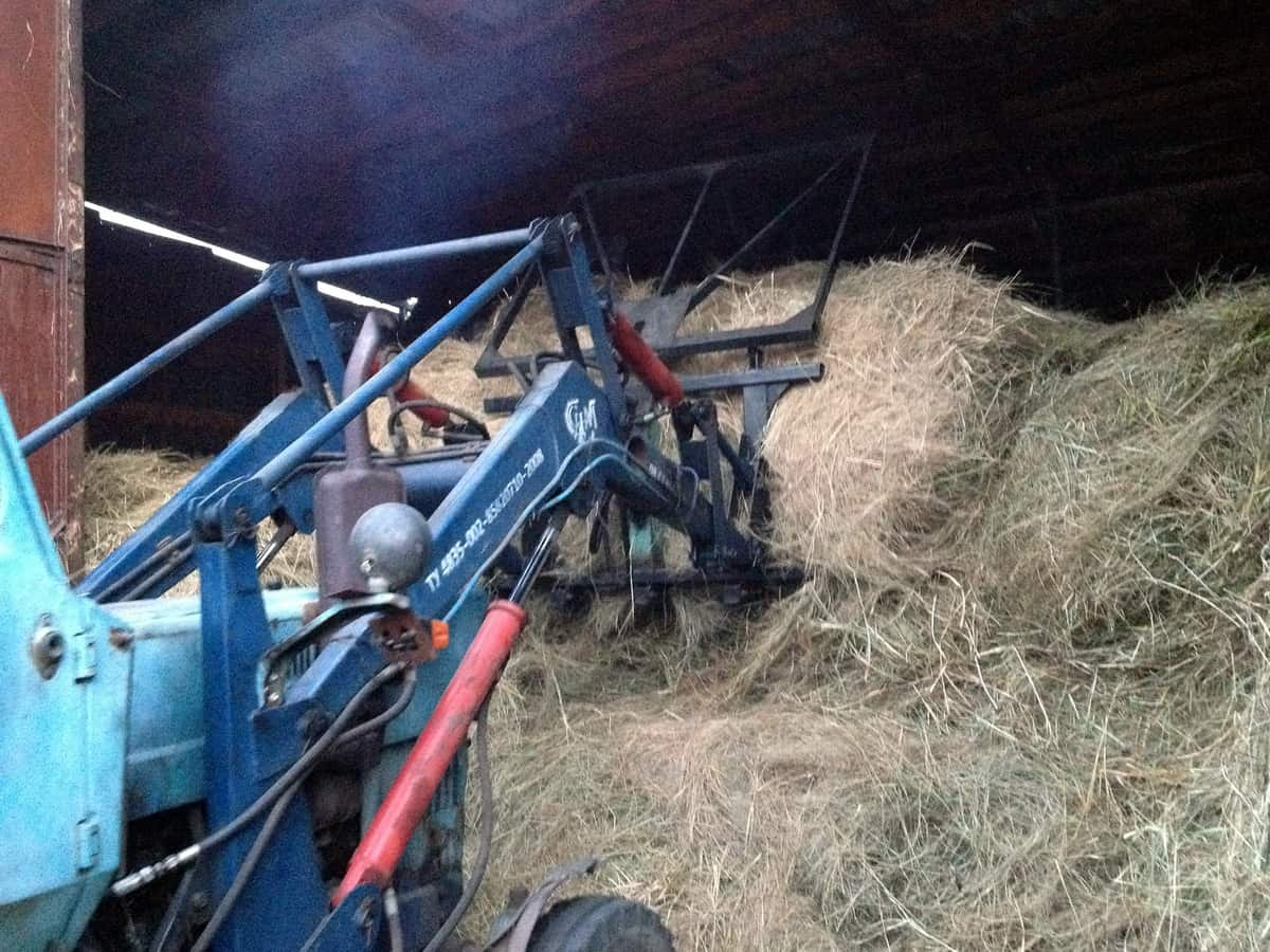 складывание сена на сеновале