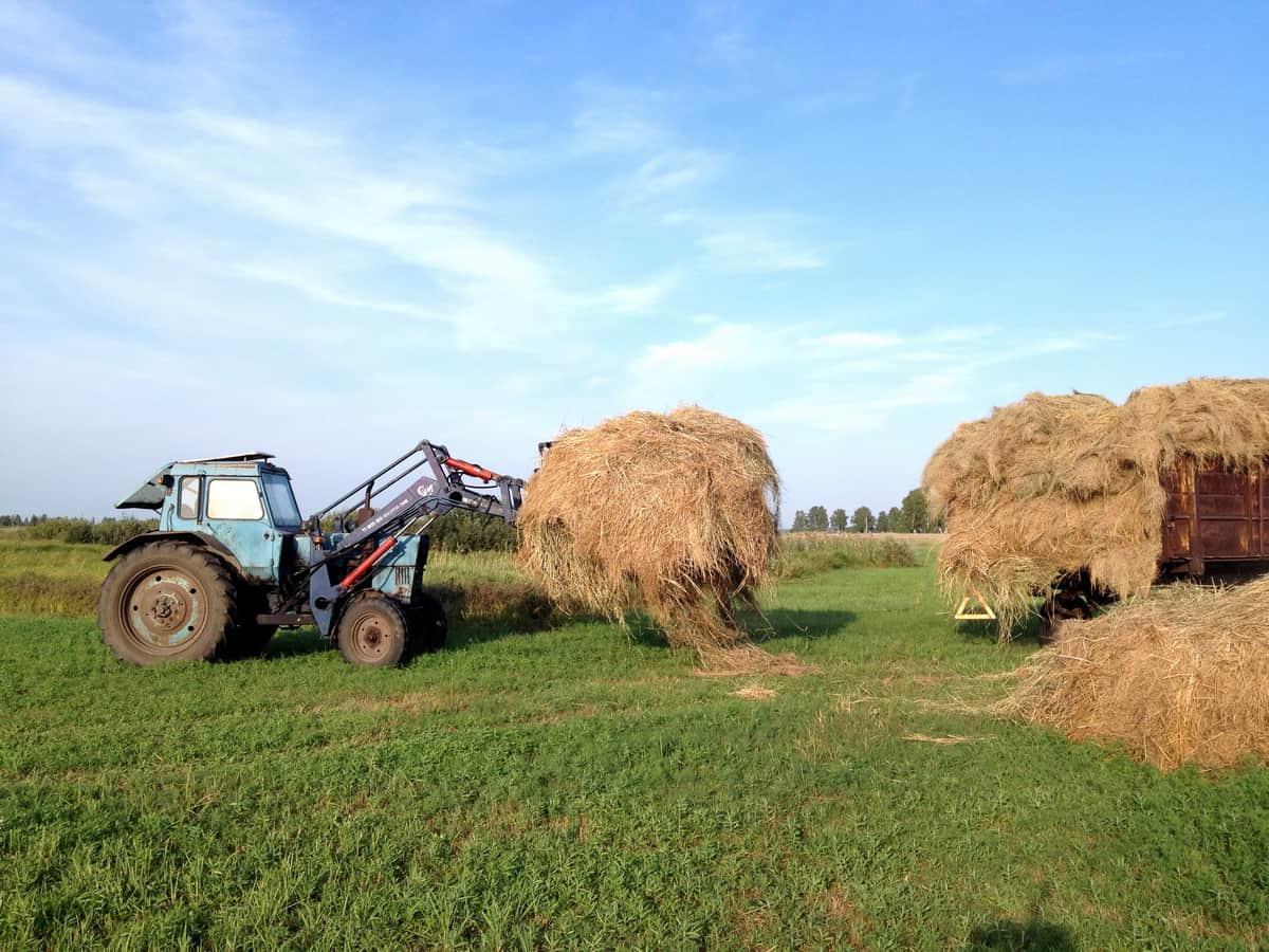 стогомет на тракторе беларус за погрузкой