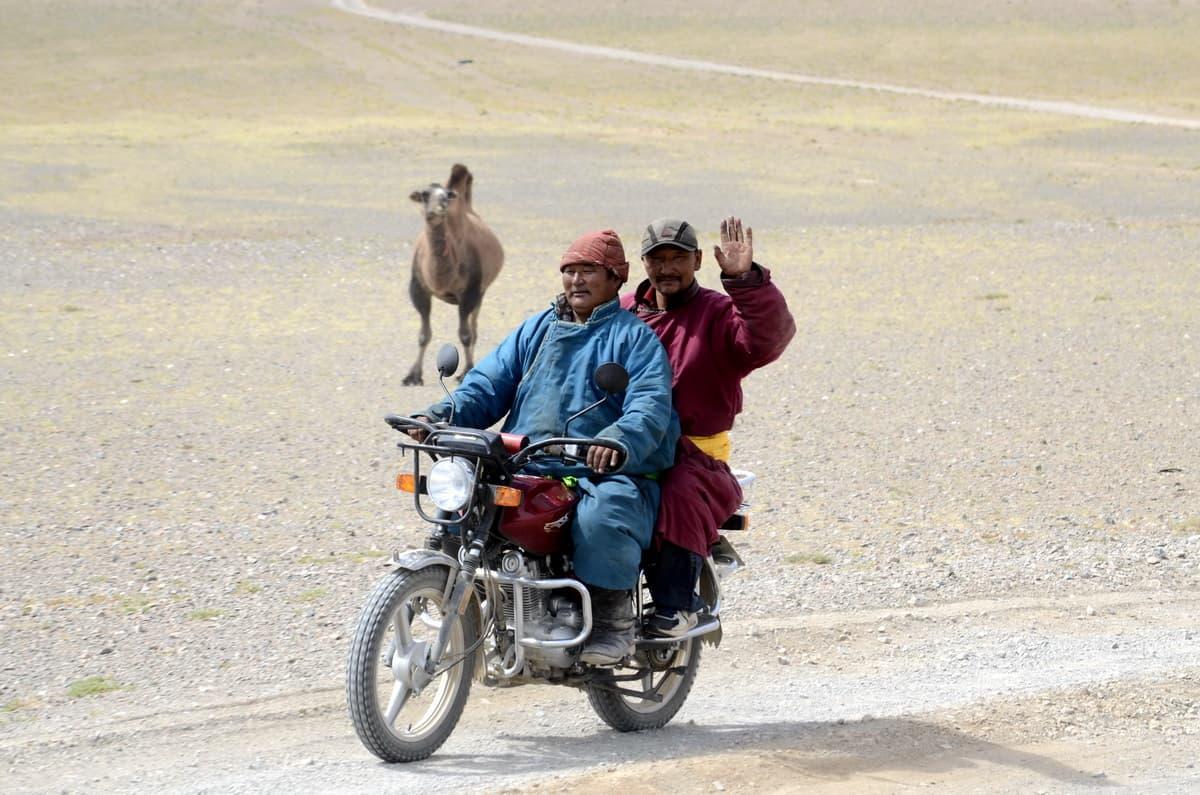монголы на мопеде, типичный транспорт в монголии