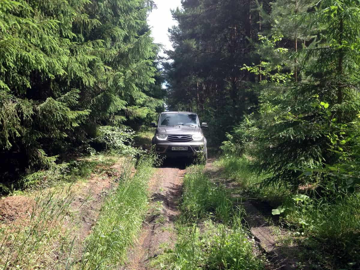 УАЗ Патриот в лесу