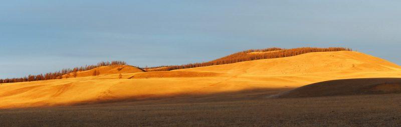 золото Монголии