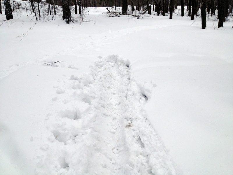 глубина снега для Тулы