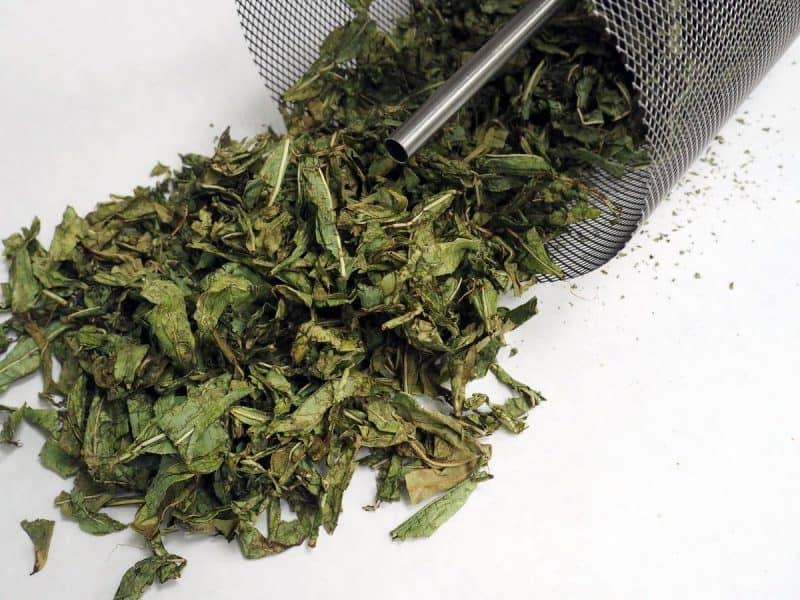 копорский чай зеленый