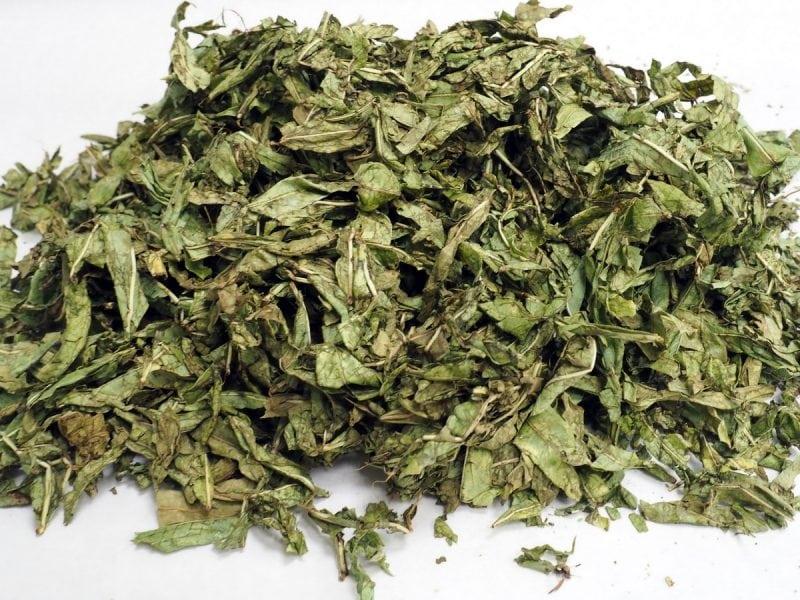 копорский чай после лиофильной сушки