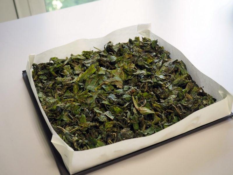 сушка копорского чая