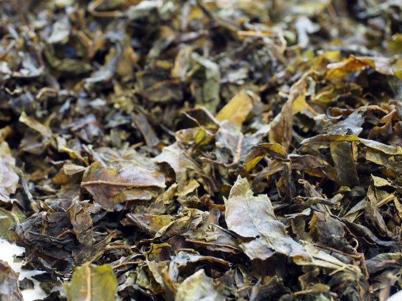 копорский чай чёрный