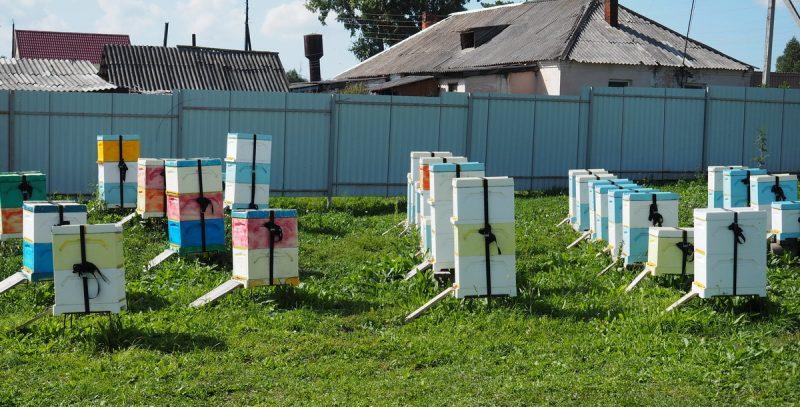 финский улей, finnish hive