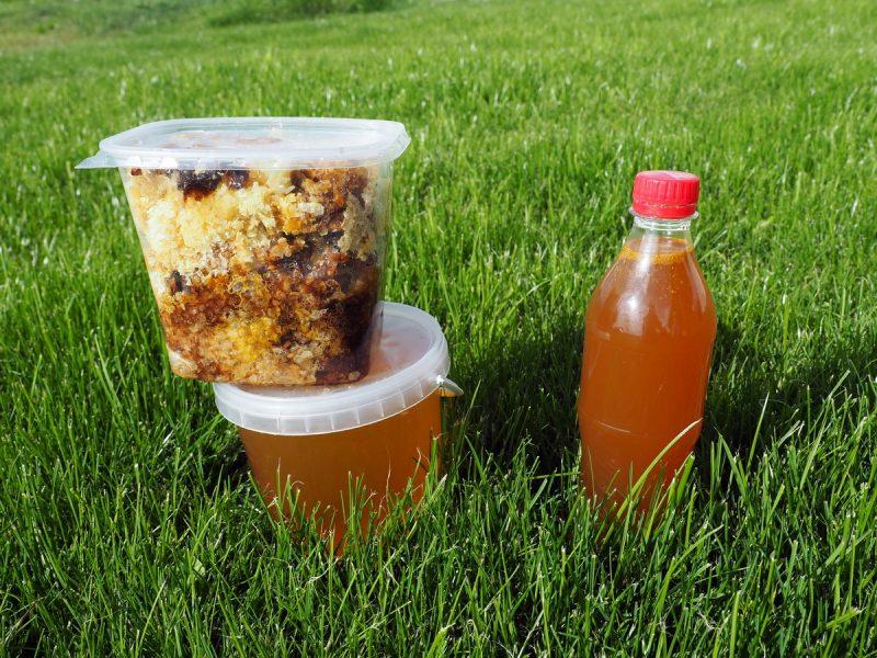 лучший мёд и медовуха в сибири, the best honey and mead in siberia