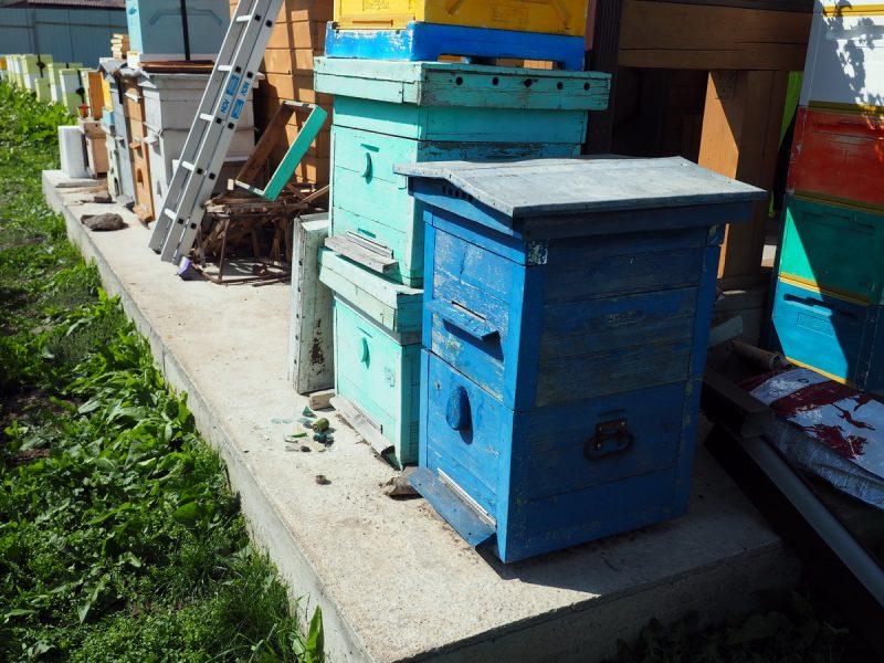 старинный улей, old beehive