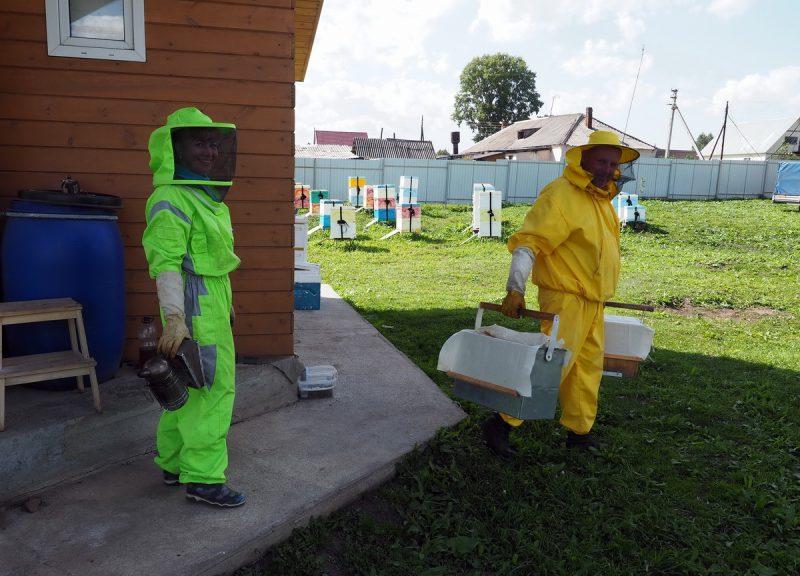 пчеловоды за работой, beekeepers at work