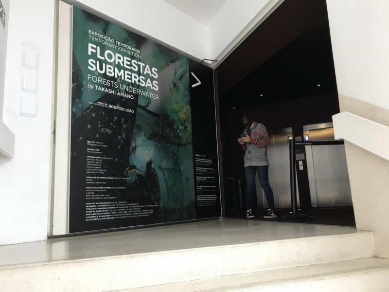 океанариум лиссабона временная выставка
