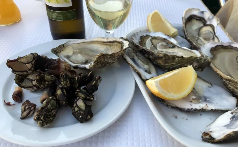 португальская кухня, Персебеш, морские уточки, Percebes, Cervejaria Barcabela, Лиссабон