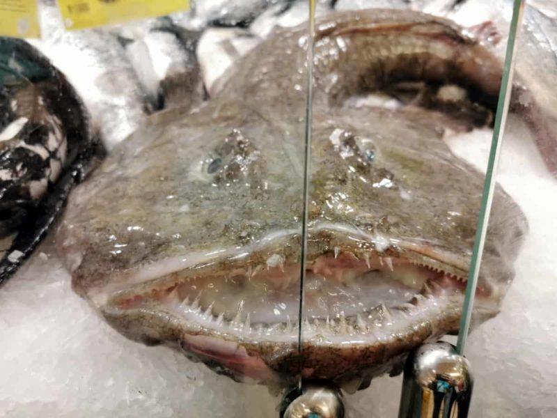 рыба-черт Tamboril в магазине Лиссабон