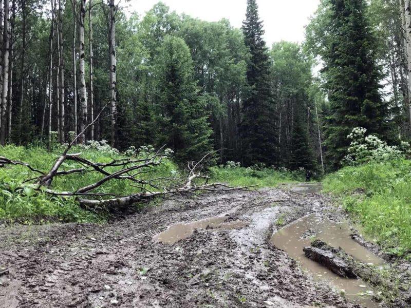 грязь, как заехать на Пихтовый гребень Новосибирская область