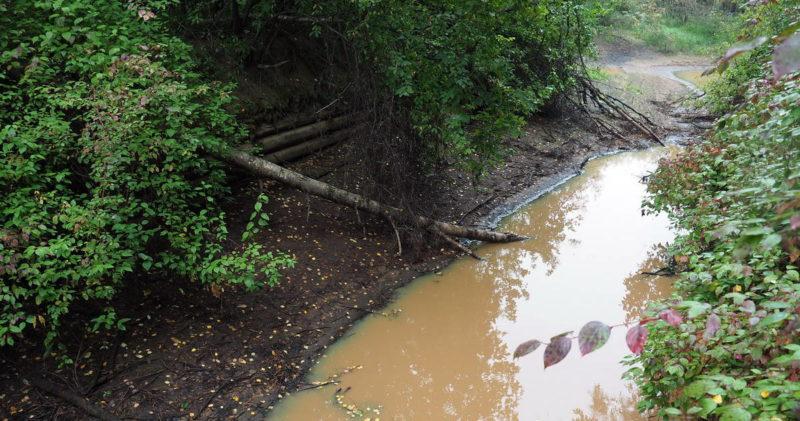 Обь-Енисейский канал, остатки сруба из лиственницы