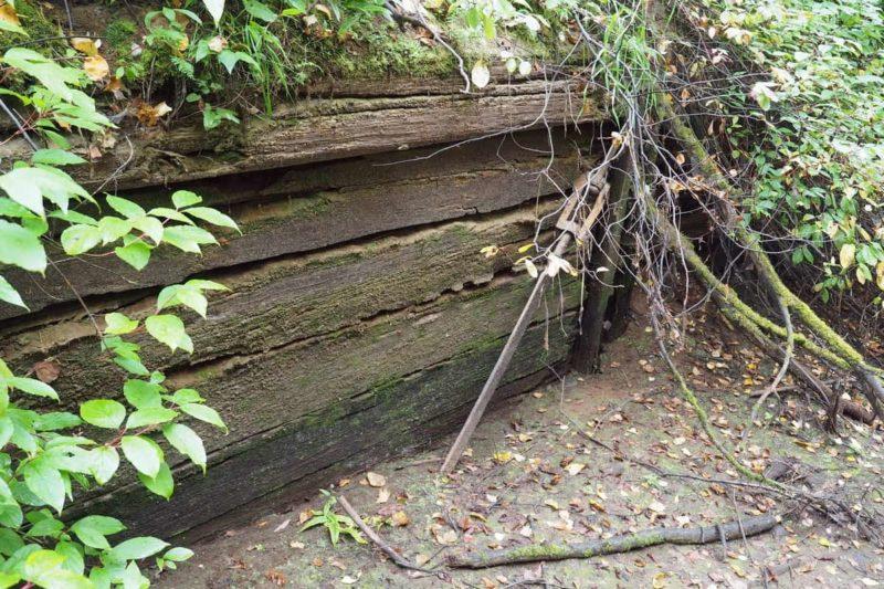 Обь-Енисейский канал, остатки сруба