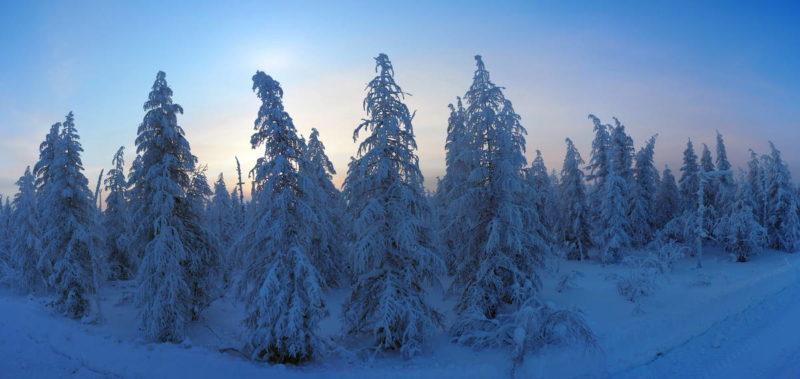 утро за полярным кругом